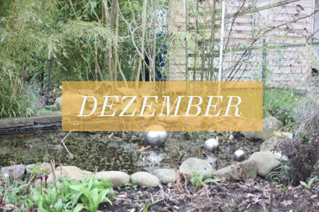 Gartenarbeit im Dezember