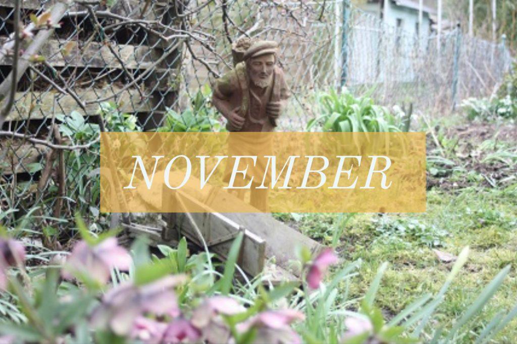 Gartenarbeit im November