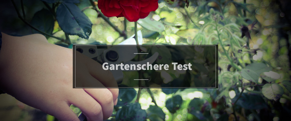 Gartenschere Test